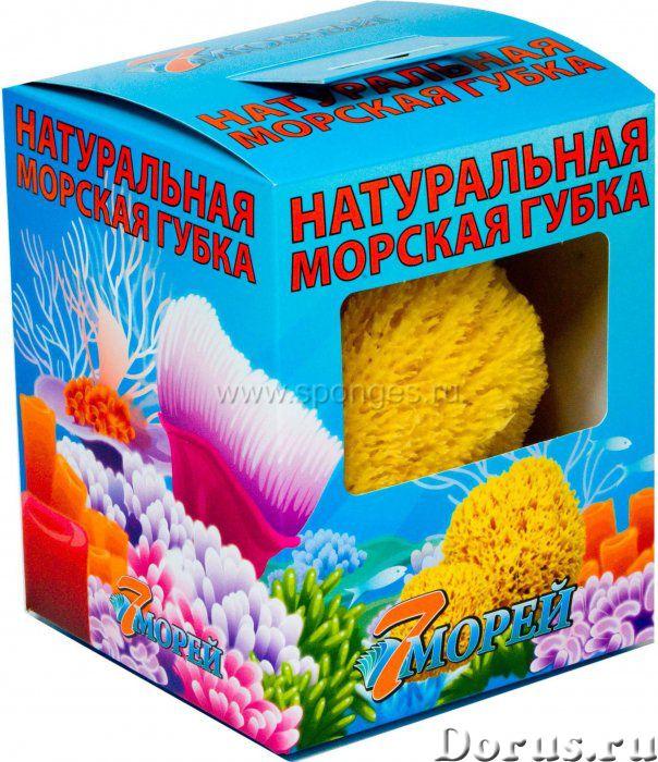 Натуральная морская губка - Массаж - С помощью губок из различных натуральных морских материалов лег..., фото 3